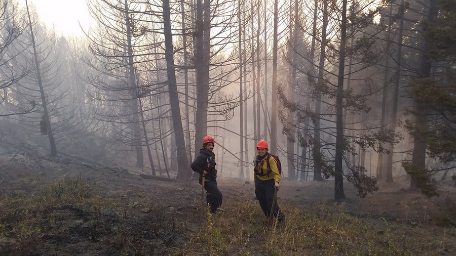 Two wildland firefighters work on a fire on a slope in trees